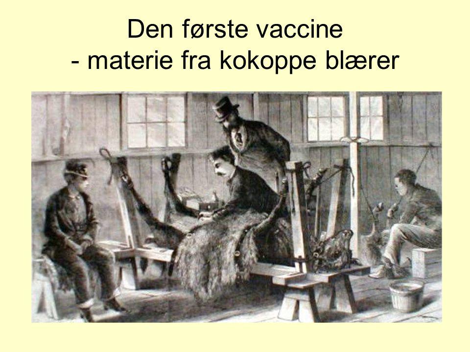 Den første vaccine - materie fra kokoppe blærer