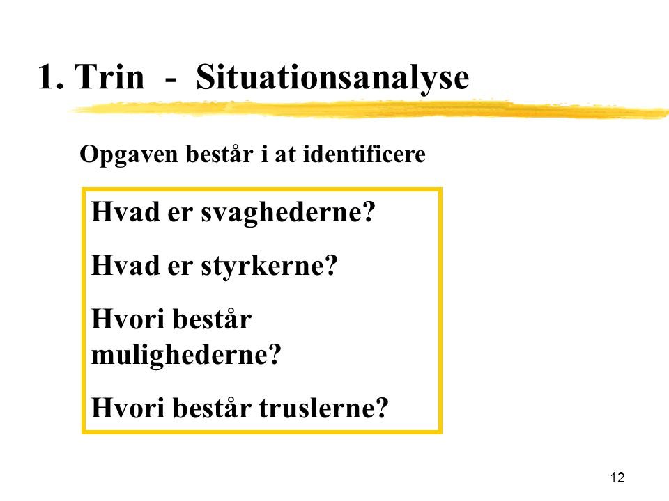 1. Trin - Situationsanalyse
