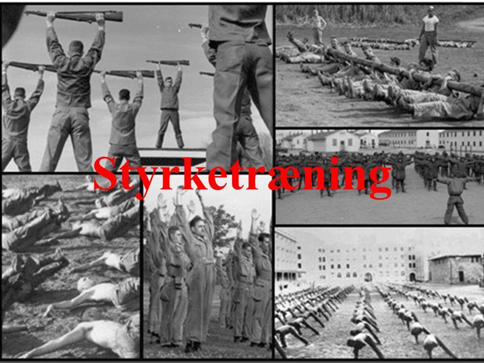 Styrketræning Brug billedet og forhør soldaterne om det er god og effektiv styrketræning 03-06-2010