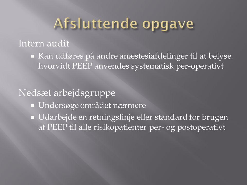 Afsluttende opgave Intern audit Nedsæt arbejdsgruppe