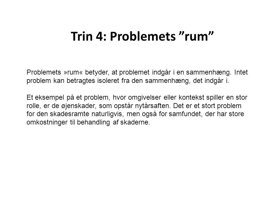 Trin 4: Problemets rum