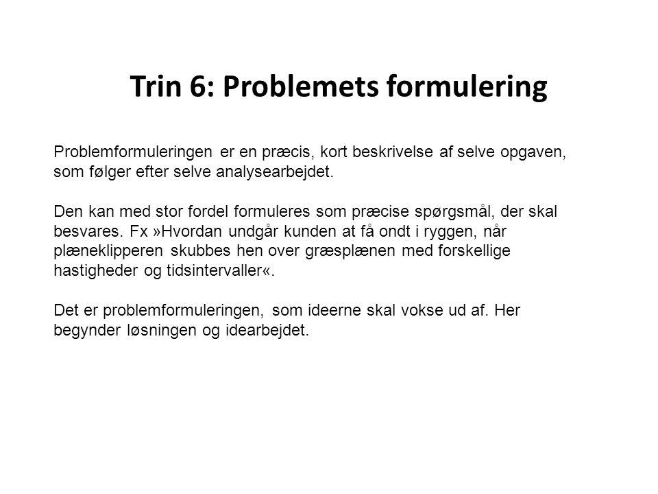 Trin 6: Problemets formulering