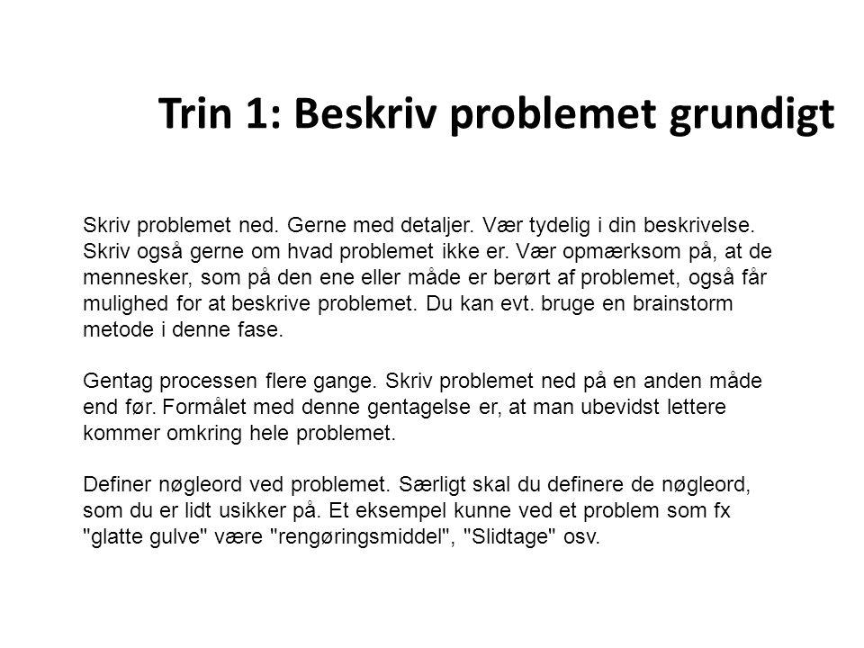 Trin 1: Beskriv problemet grundigt