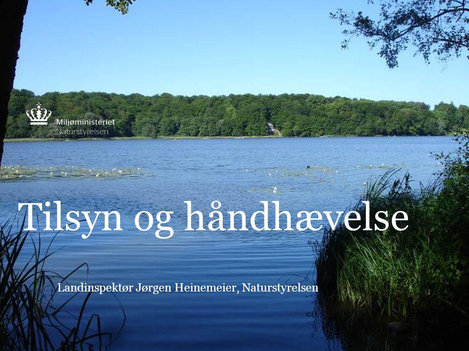 Landinspektør Jørgen Heinemeier, Naturstyrelsen
