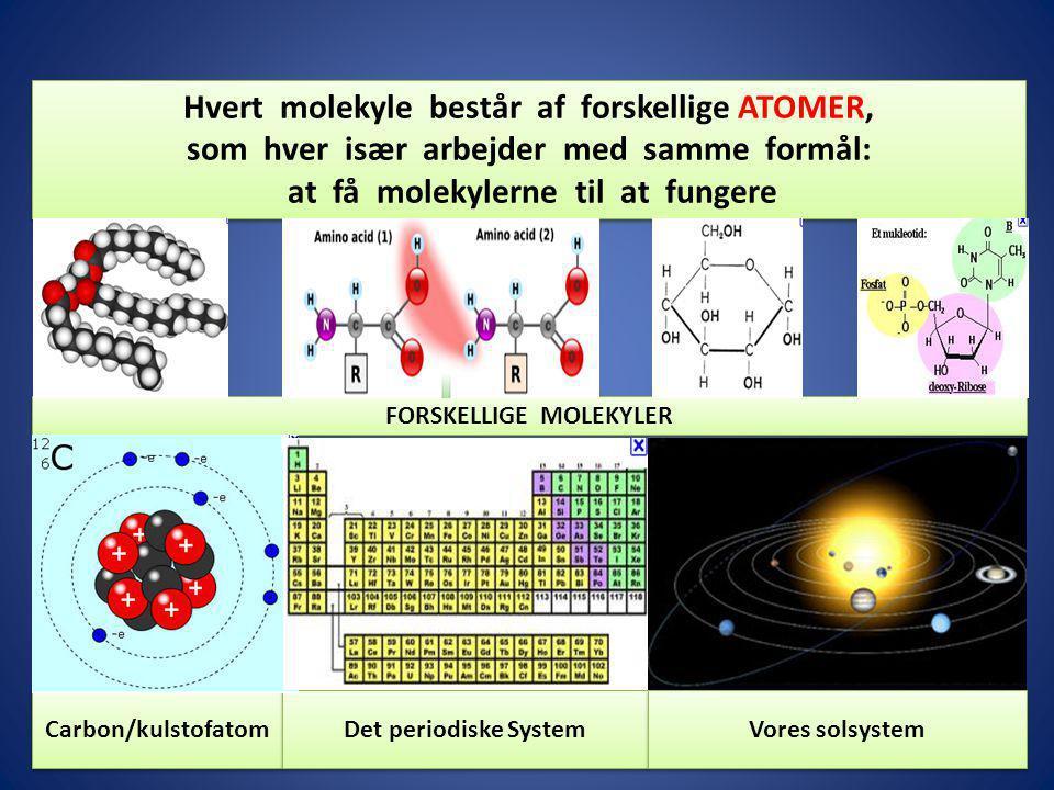 Hvert molekyle består af forskellige ATOMER,