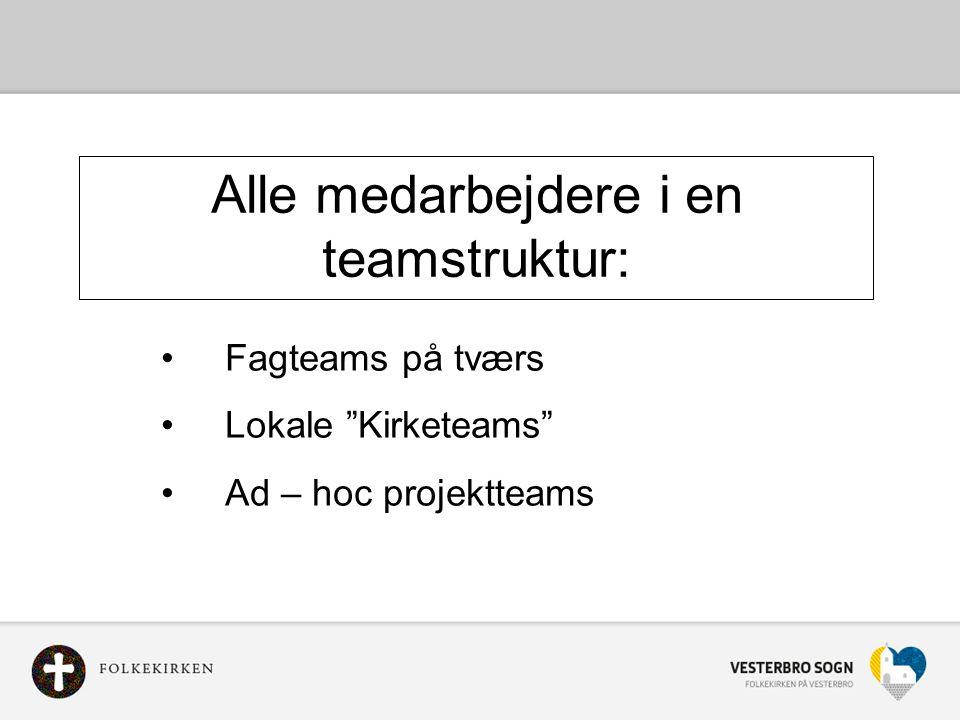 Alle medarbejdere i en teamstruktur: