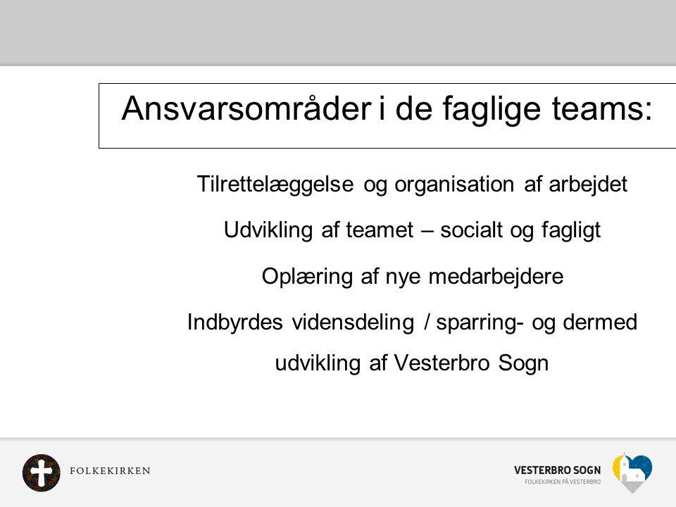 Ansvarsområder i de faglige teams: