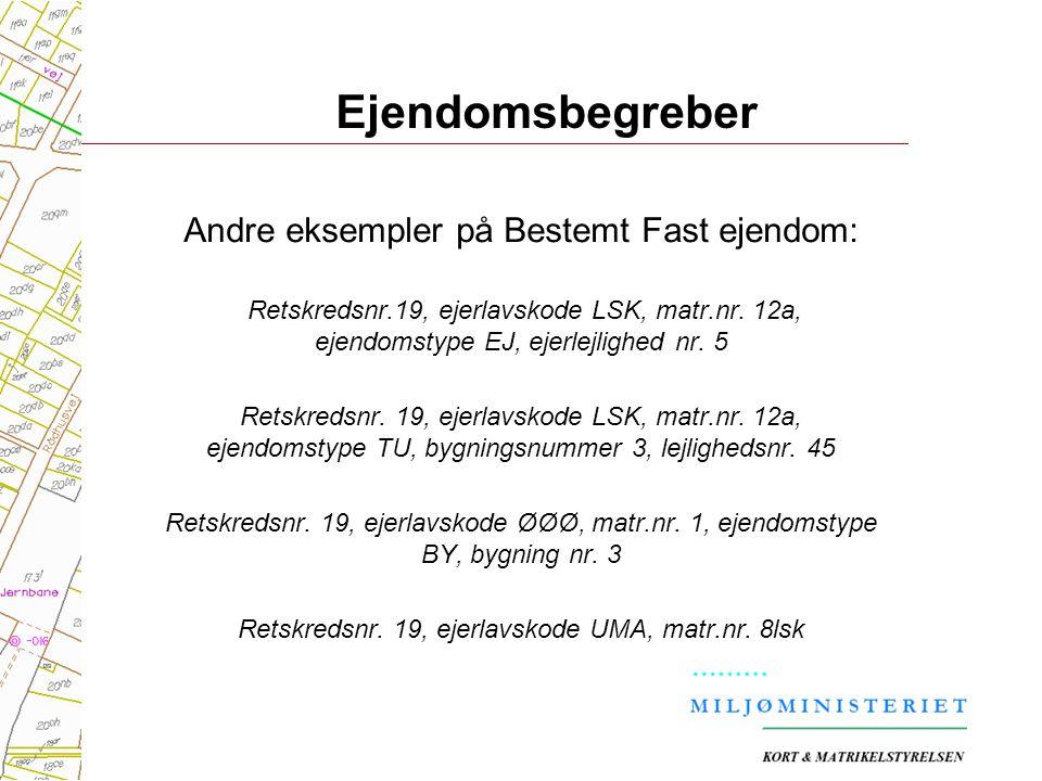 Ejendomsbegreber Andre eksempler på Bestemt Fast ejendom: