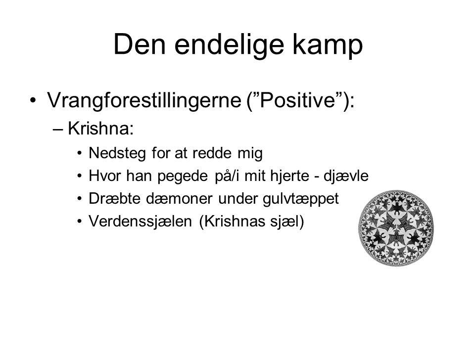 Den endelige kamp Vrangforestillingerne ( Positive ): Krishna: