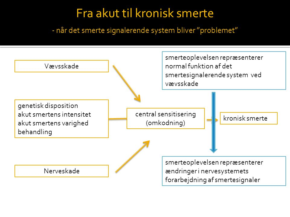 Kroniske smerter - fibromyalgi - ppt video online download
