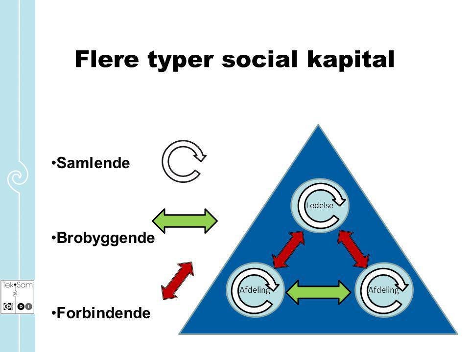 Flere typer social kapital