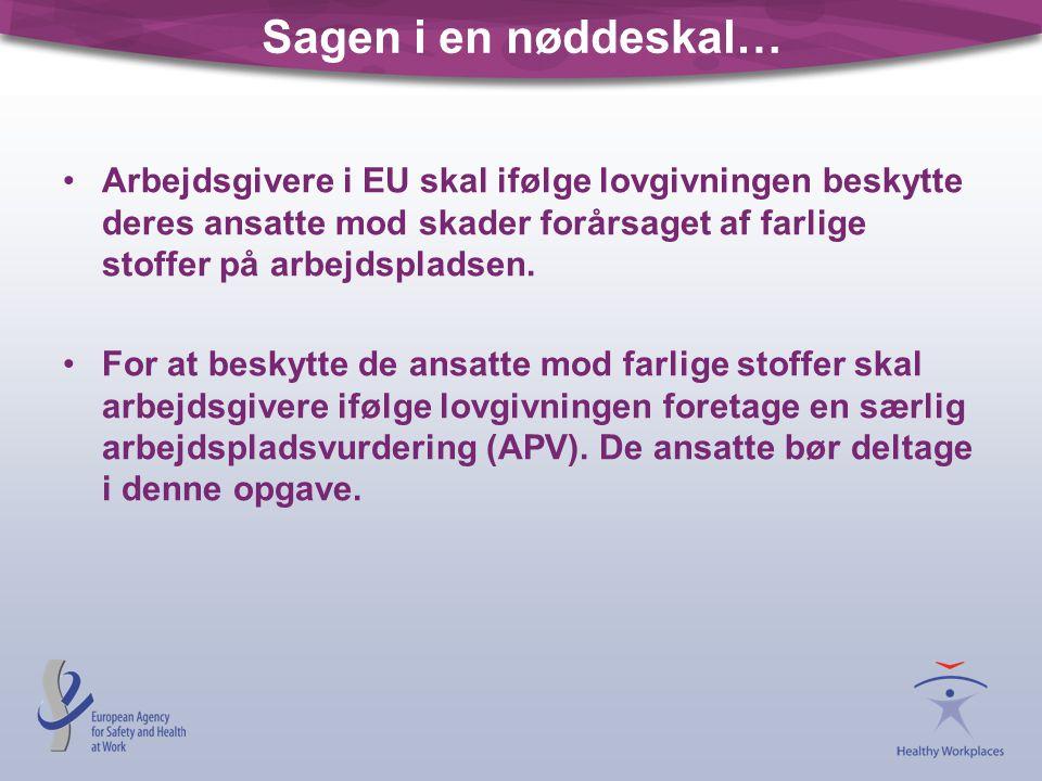 Sagen i en nøddeskal… Arbejdsgivere i EU skal ifølge lovgivningen beskytte deres ansatte mod skader forårsaget af farlige stoffer på arbejdspladsen.