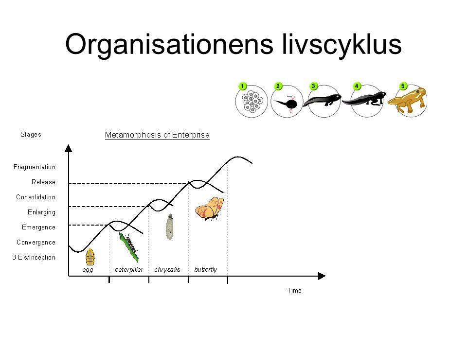 Organisationens livscyklus