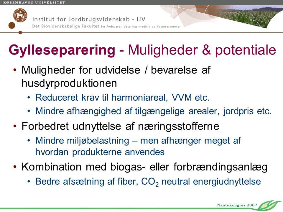 Gylleseparering - Muligheder & potentiale