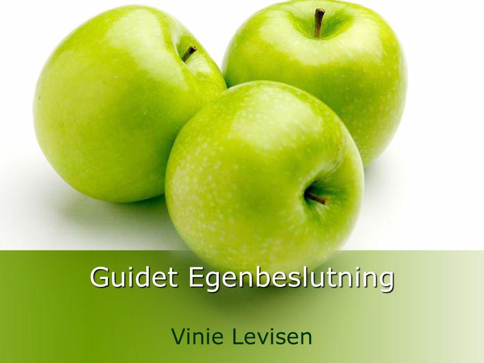Guidet Egenbeslutning
