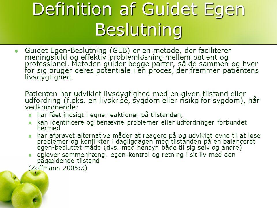 Definition af Guidet Egen Beslutning