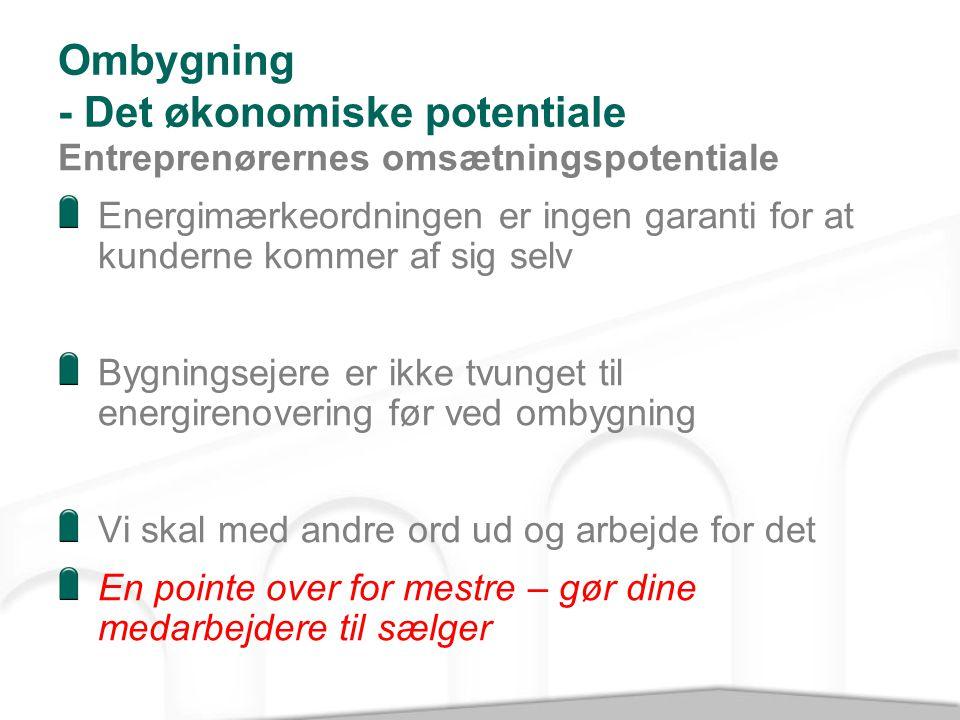 Ombygning - Det økonomiske potentiale