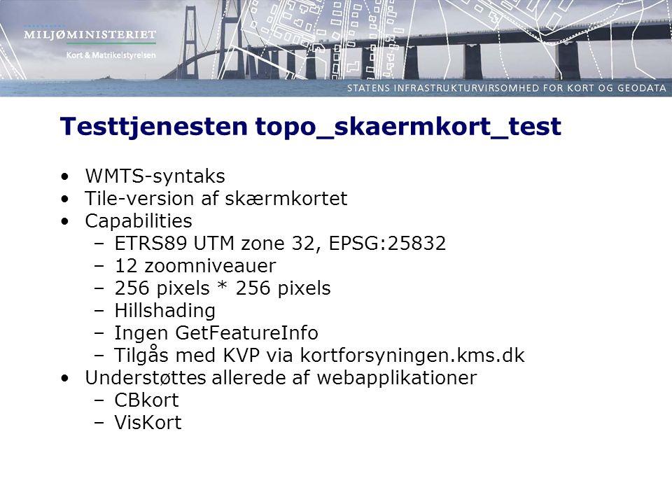 Testtjenesten topo_skaermkort_test