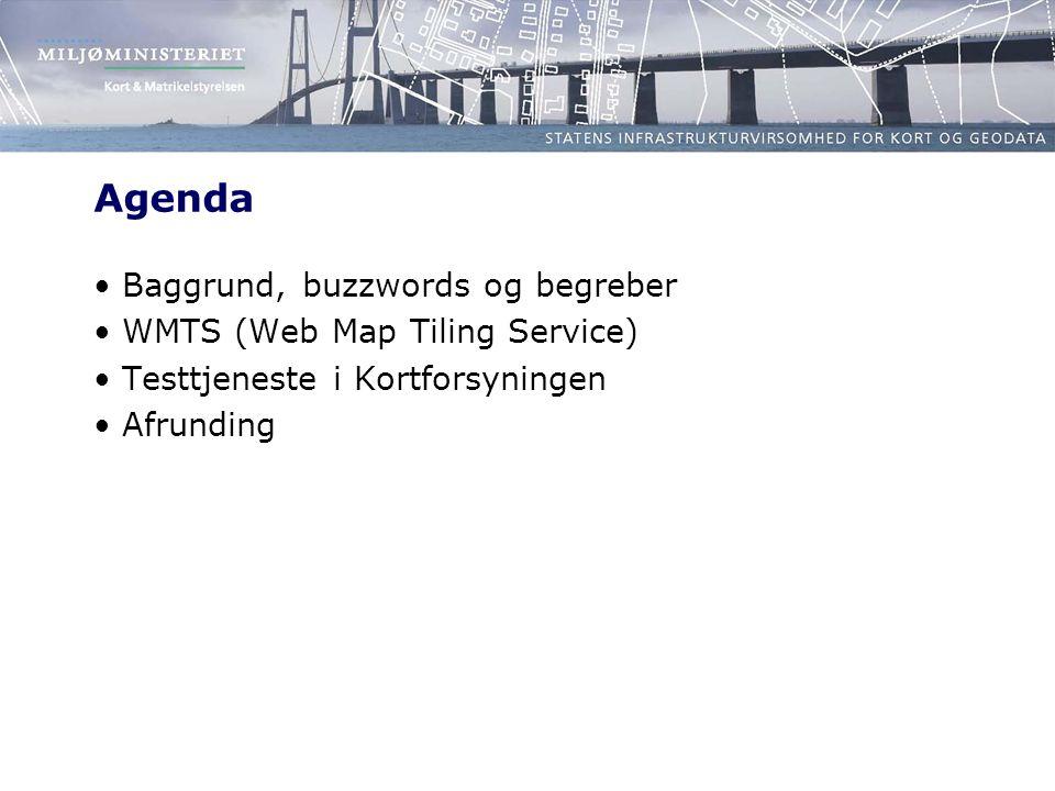 Agenda Baggrund, buzzwords og begreber WMTS (Web Map Tiling Service)