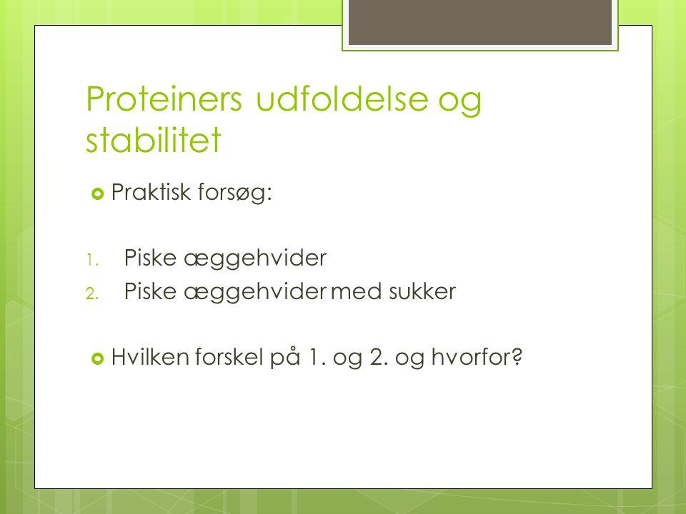 Proteiners udfoldelse og stabilitet