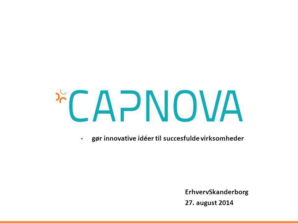 gør innovative idéer til succesfulde virksomheder