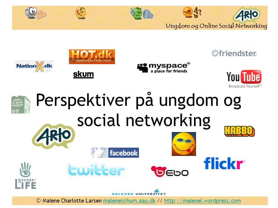 Perspektiver på ungdom og social networking
