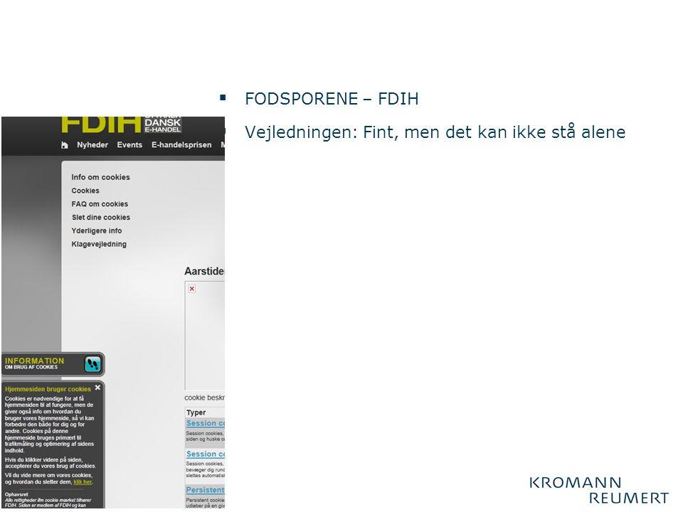 FODSPORENE – FDIH Vejledningen: Fint, men det kan ikke stå alene
