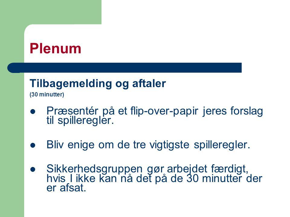Plenum Tilbagemelding og aftaler