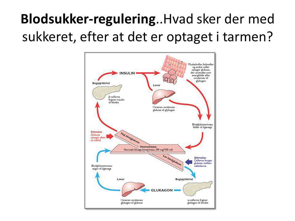 Blodsukker-regulering