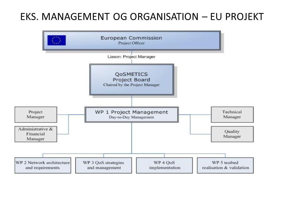 EKS. MANAGEMENT OG ORGANISATION – EU PROJEKT