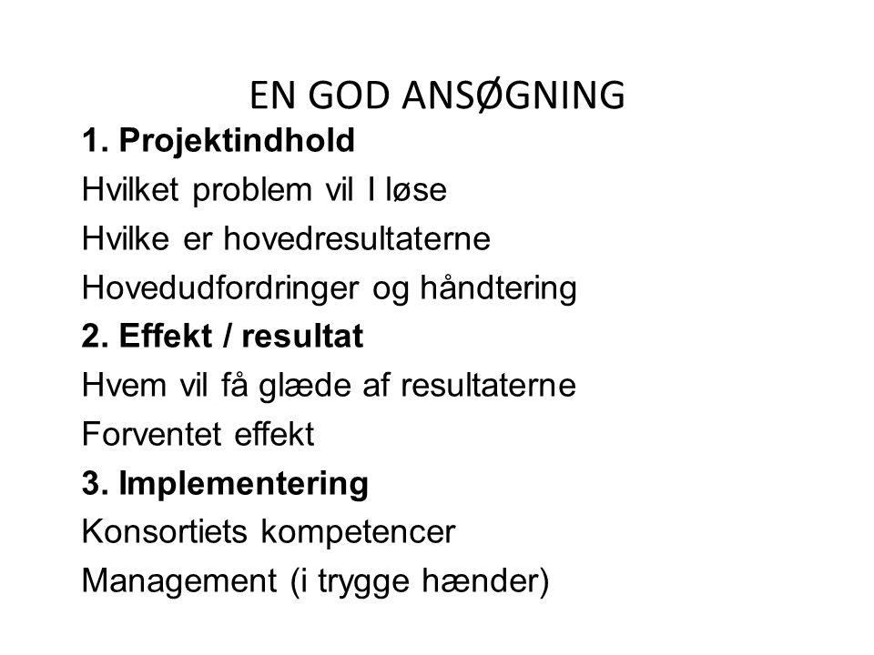EN GOD ANSØGNING 1. Projektindhold Hvilket problem vil I løse