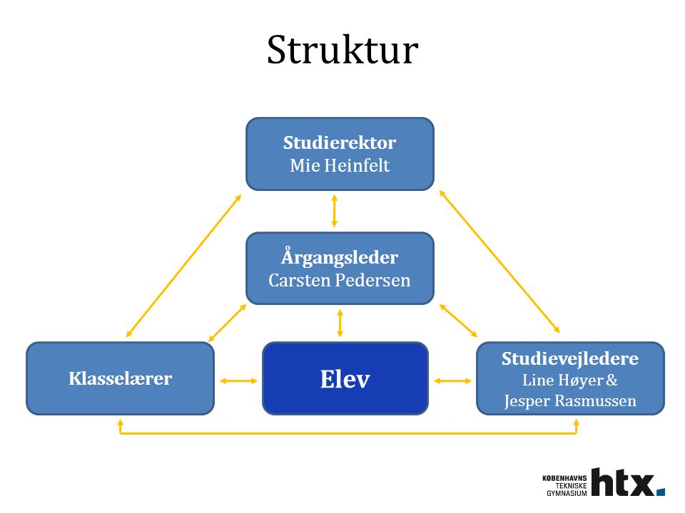 Struktur Elev Studierektor Mie Heinfelt Årgangsleder Carsten Pedersen
