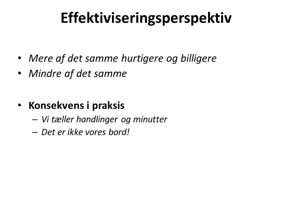 Effektiviseringsperspektiv