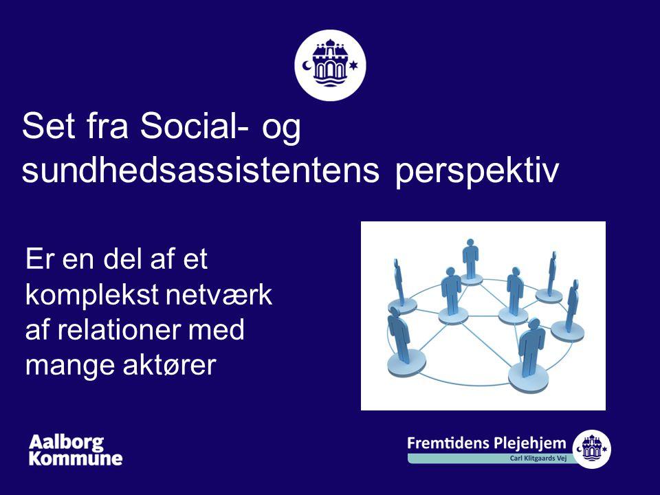 Set fra Social- og sundhedsassistentens perspektiv