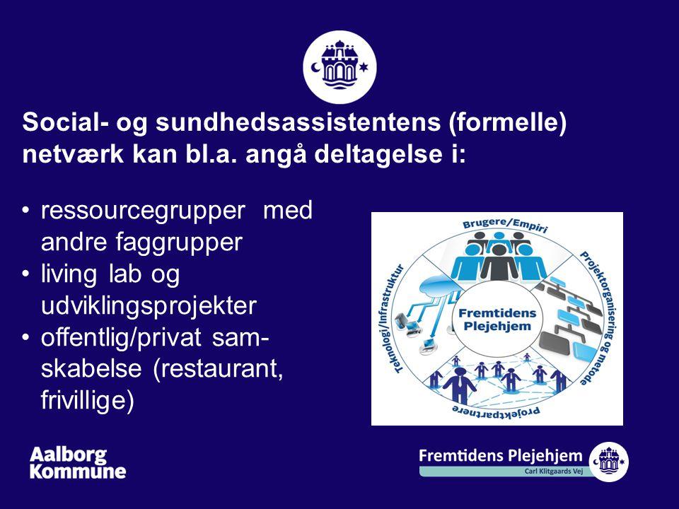 Social- og sundhedsassistentens (formelle) netværk kan bl. a