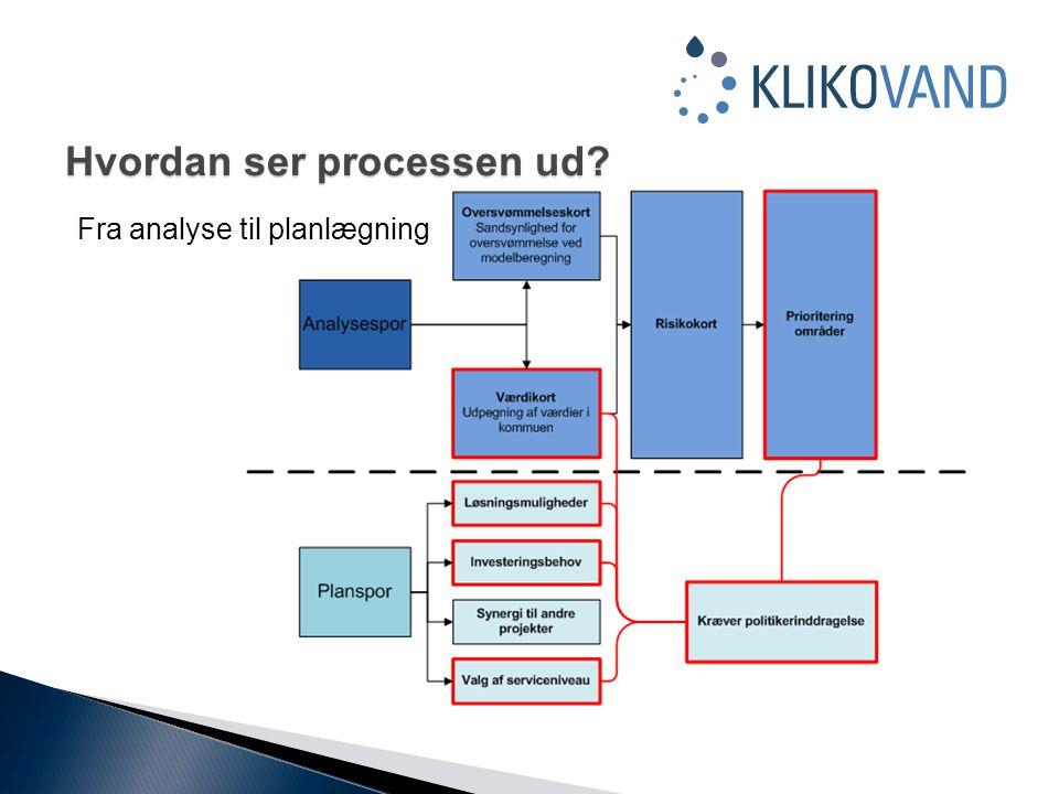 Hvordan ser processen ud