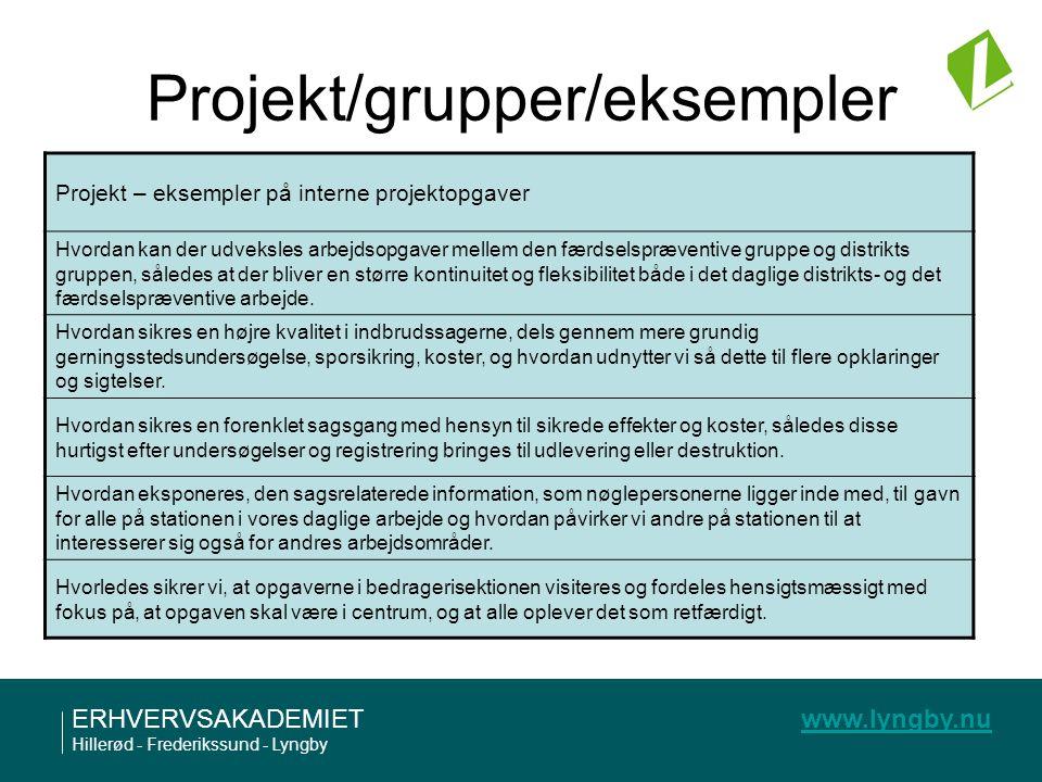 Projekt/grupper/eksempler