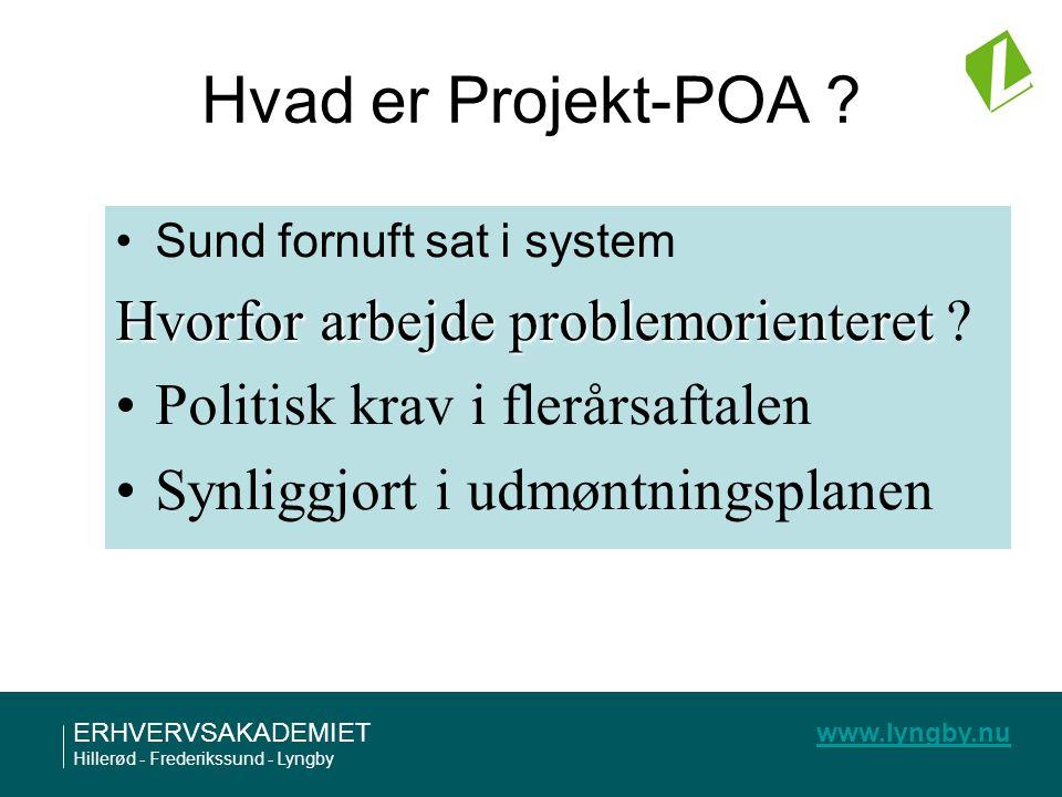 Hvad er Projekt-POA Hvorfor arbejde problemorienteret