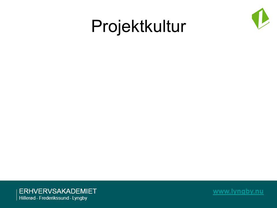 Projektkultur