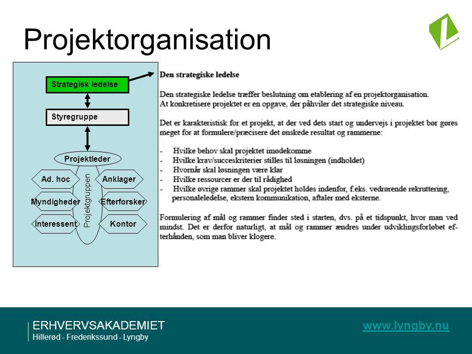 Projektorganisation Strategisk ledelse Styregruppe Projektgruppen