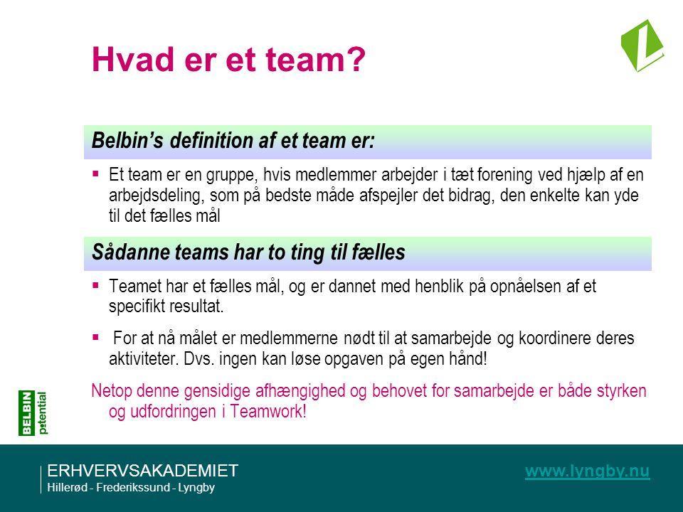 Hvad er et team Belbin's definition af et team er: