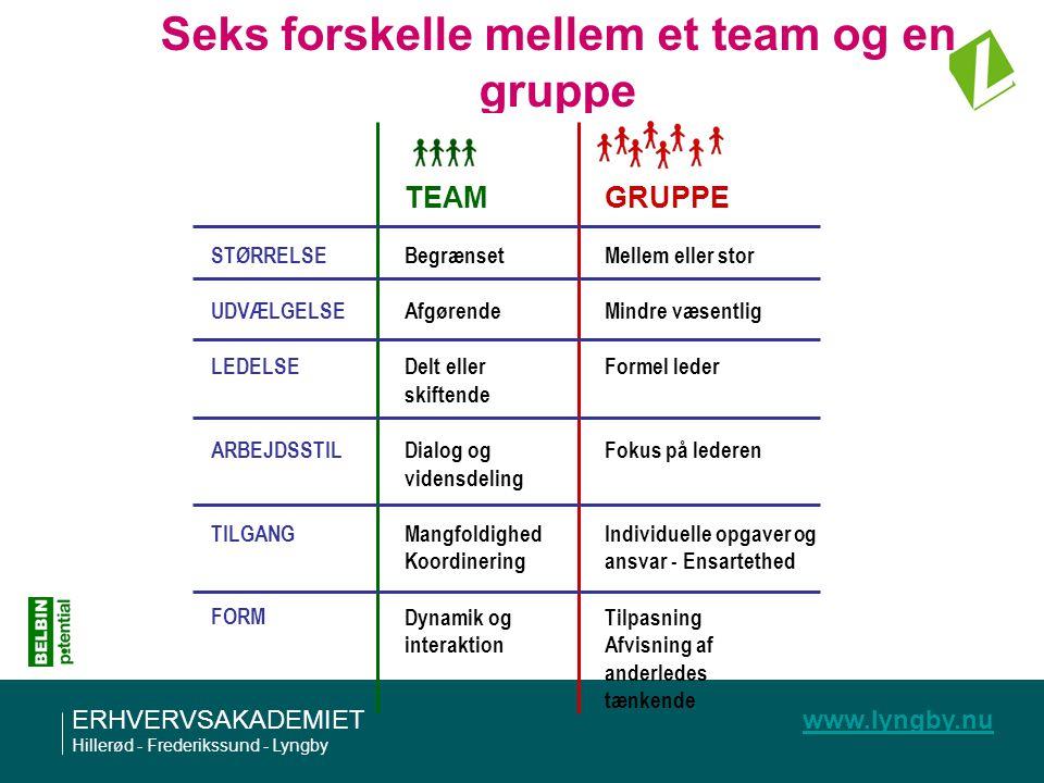 Seks forskelle mellem et team og en gruppe