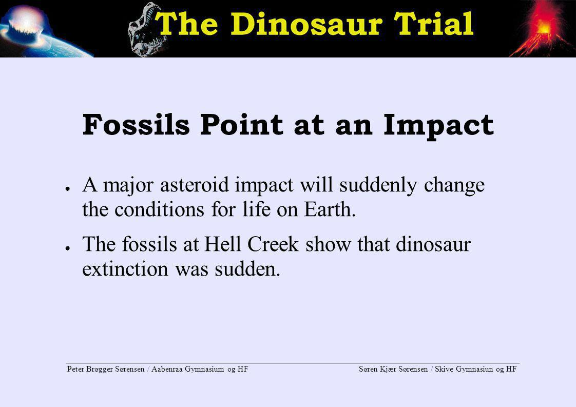Fossils Point at an Impact