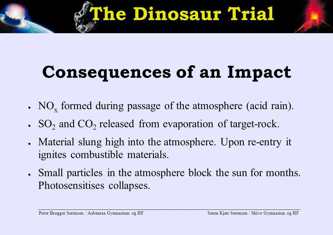 Consequences of an Impact