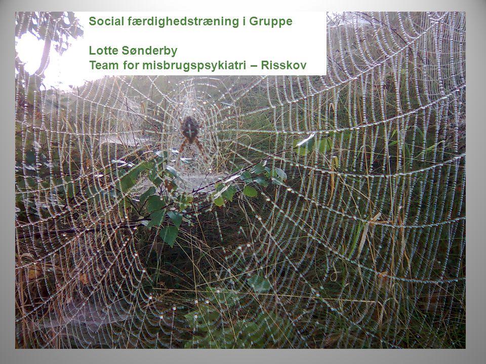 Social færdighedstræning i Gruppe