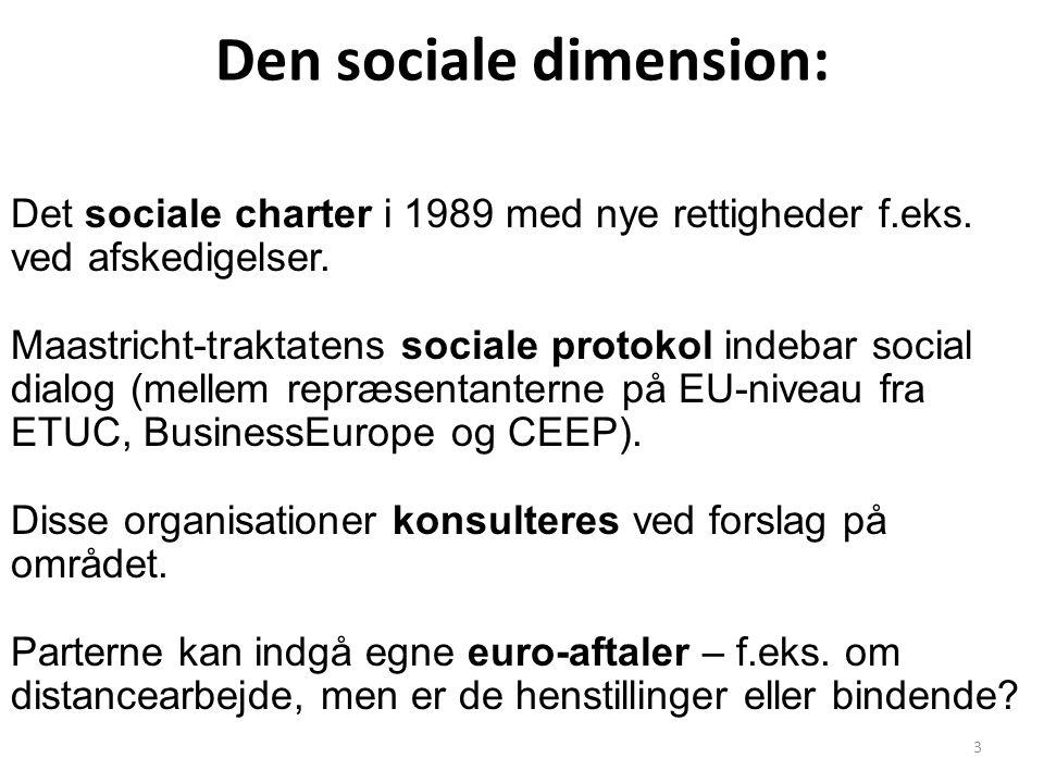 Den sociale dimension: