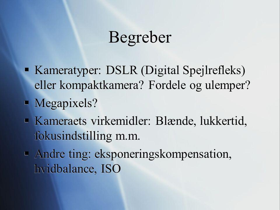 Begreber Kameratyper: DSLR (Digital Spejlrefleks) eller kompaktkamera Fordele og ulemper Megapixels