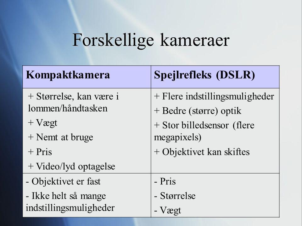 Forskellige kameraer Kompaktkamera Spejlrefleks (DSLR)