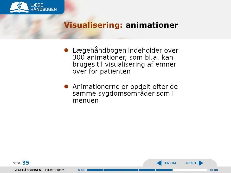 Visualisering: animationer