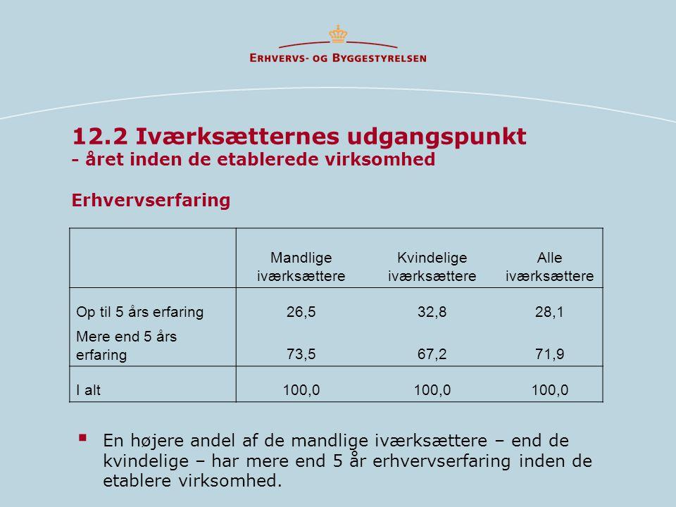 12.2 Iværksætternes udgangspunkt - året inden de etablerede virksomhed Erhvervserfaring